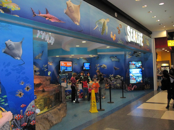 mall of america aquarium coupons 2017 2018 best cars reviews